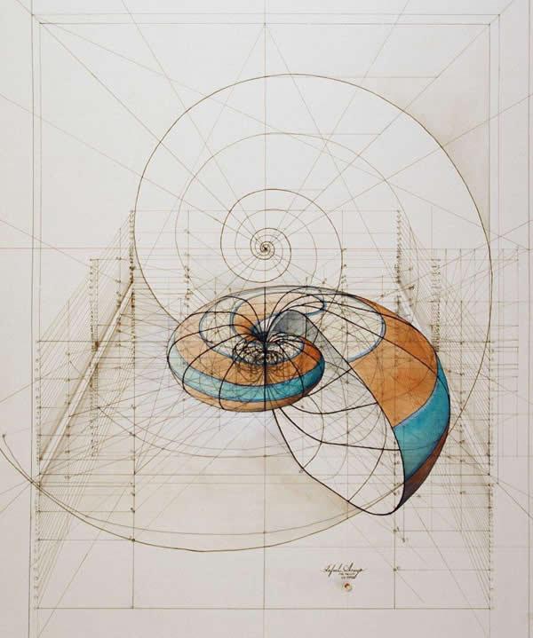 Nautilus, by Rafael Araujo.